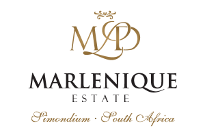 marlenique_home_page_cover_logo